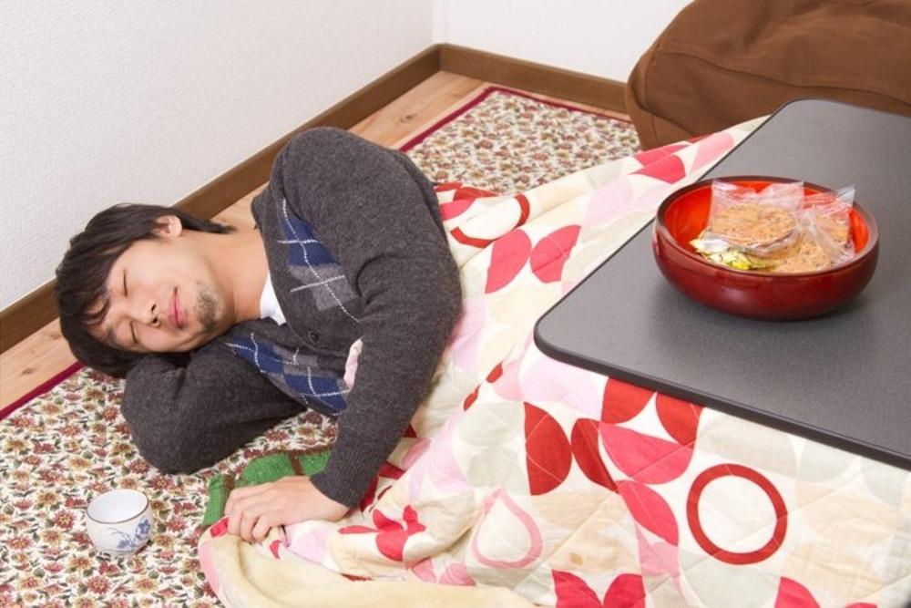 https___www.pakutaso.com_assets_c_2012_12_C777_kotatumuri500-thumb-1000xauto-2348