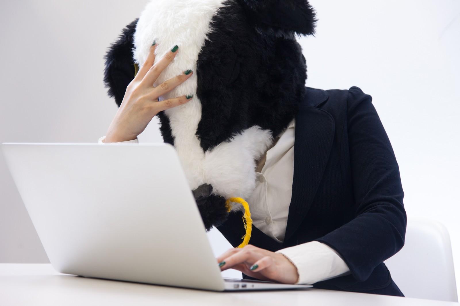 仕事で使うPCは必ず同じスペック、環境、設定で代替のPC端末を用意しておくのがオススメ